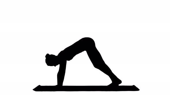 Thumbnail for Woman Doing Upward Dog Yoga Position, Part of Sun Salutation Track Matte