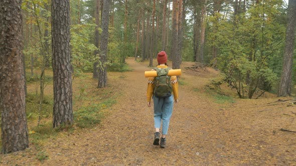 Thumbnail for Joyful Woman in Yellow Sweater Walks Turning Along Forest