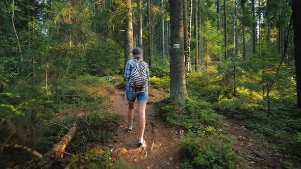 Thumbnail for Active Woman with a Backpack Walking Through the Woods. Back View