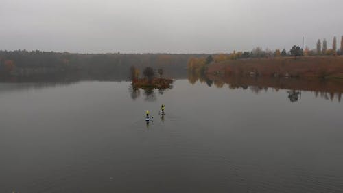 Man and Woman on Sup Paddle Boards at Wide River with Small Island on Golden Autumn Forest