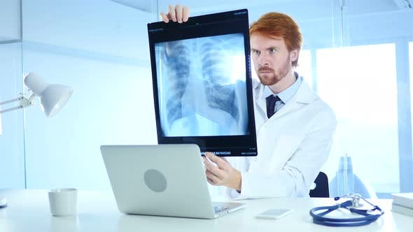 Thumbnail for Specialist Doctor Checking X-ray of Patient for Diagnosis