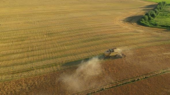 Thumbnail for Luftaufnahme Mähdrescher Ernte Weizen
