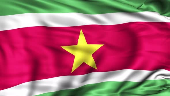 Thumbnail for Suriname Flag