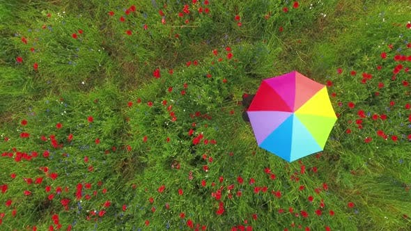 Thumbnail for View From Above of Unrecognized Girl Spinning Colorful Umbrella in a Poppy
