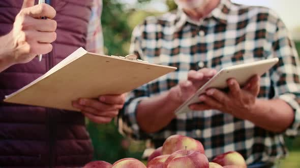 Thumbnail for Modern farmers with tablet examining apples