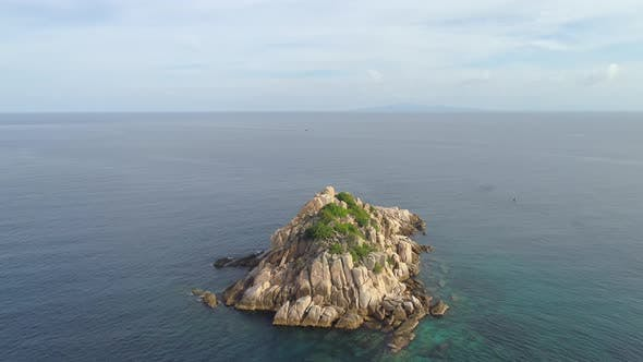 Cover Image for Shark island in Sea
