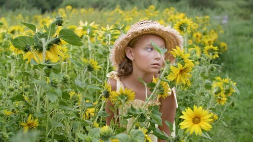 Portrait Romantic Girl in Straw Hat on Sunflowers Meadow in Summer Village. Beautiful Young Woman in
