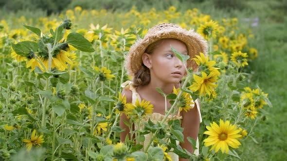 Thumbnail for Porträt Romantisches Mädchen mit Strohhut auf Sonnenblumenwiese im Sommerdorf. Schöne junge Frau in