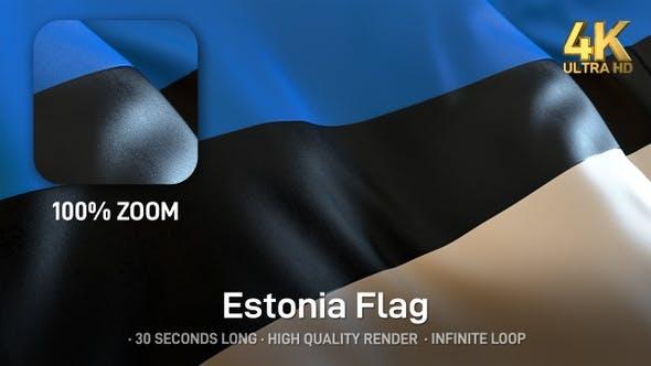 Thumbnail for Estonia Flag - 4K
