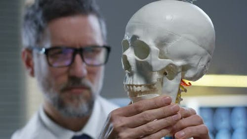 Jaw of Skull Being Adjusted By Doctor