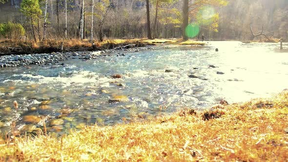 Thumbnail for Dolly Slider Shot of the Splashing Water in a Mountain River Near Forest. Wet Rocks and Sun Rays