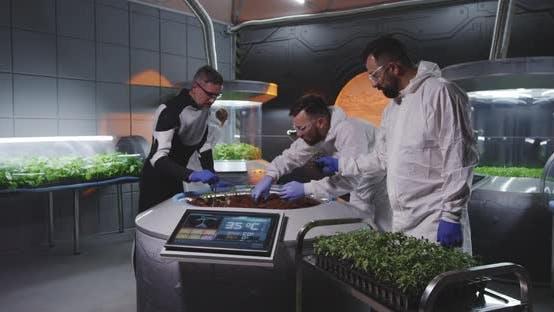 Scientists Examining Seedlings on Mars Base