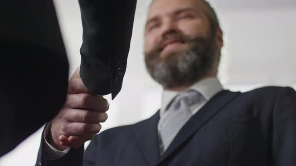 Thumbnail for Bearded Entrepreneur Shaking Hand of Colleague