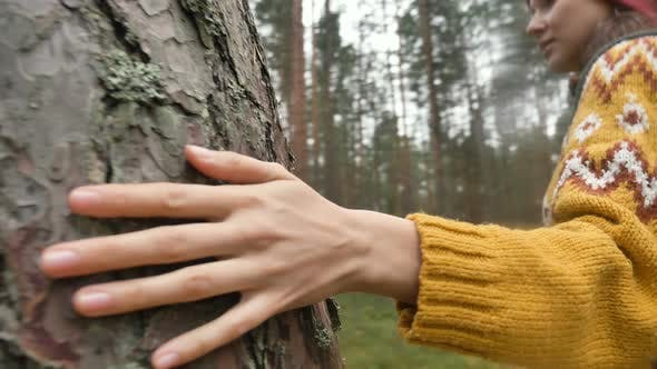 Thumbnail for Hiker in Sweater Runs Hand on Pine Tree Trunk Walking Around