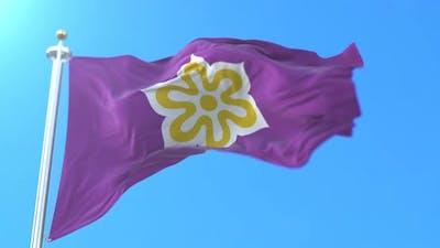 Kyoto Flag, Japan
