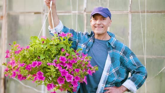 Thumbnail for Agriculture Confident Male Gardener Examining Potted Flower Plant