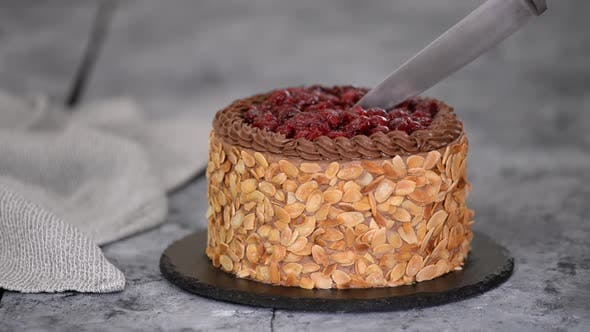 Thumbnail for Cutting a Chocolate Cherry Cake with Almond Flakes