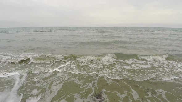 Thumbnail for Aerial view along beach polluted with seaweed and waves, ecology, tourism