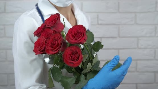 Nice Roses for Doctor