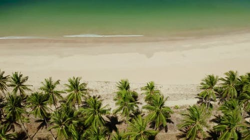 Tropical Beach with White Sand, View From Above.