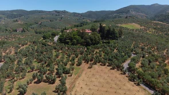 Aerial Tuscany Landscape