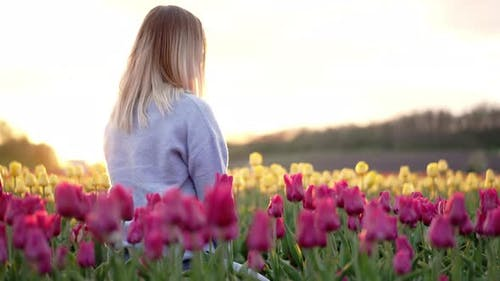 Unrecognizable Blonde Woman Sitting Alone in Tulips Field