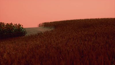 Gold Wheat Field at Sunset Landscape