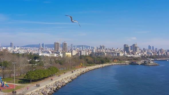 Thumbnail for Istanbul Maltepe Bosphorus Aerial View 15