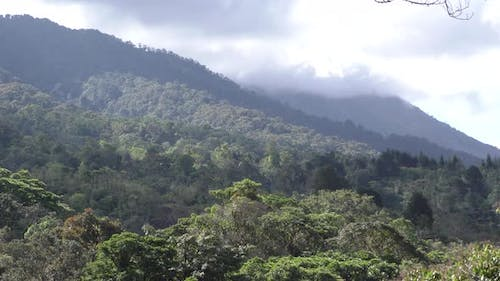 Forest Arenal Canopy Green Rolling Hills Obscure in Costa Rica