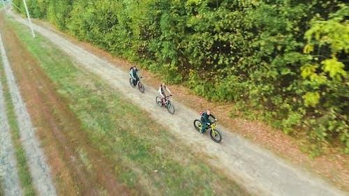 Aerial Family Biking on Path Near Forest