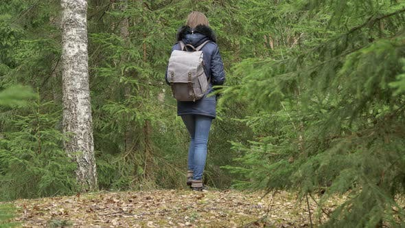 Thumbnail for Young Woman With Backpack in a Forest in Summer
