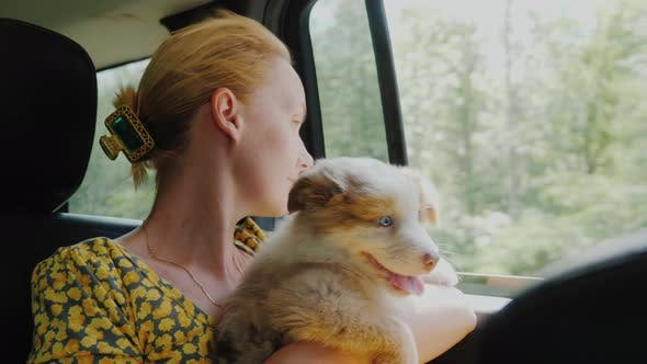 A Woman with a Pet Travels in a Car, Looking Out the Window Together