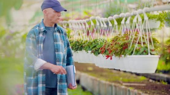 Cheerful Farmer Spraying Herbicide at Farm