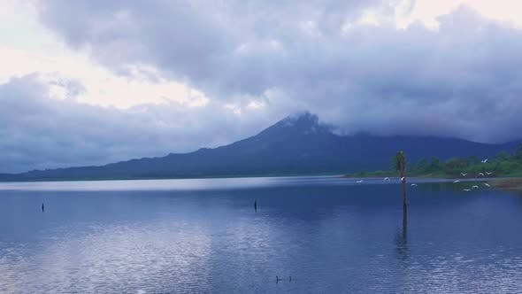 White Cranes flying at Arenal Lake near La Fortuna, Costa Rica. Aerial drone view