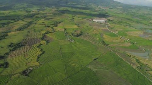 Bergtal mit Ackerland auf den Philippinen
