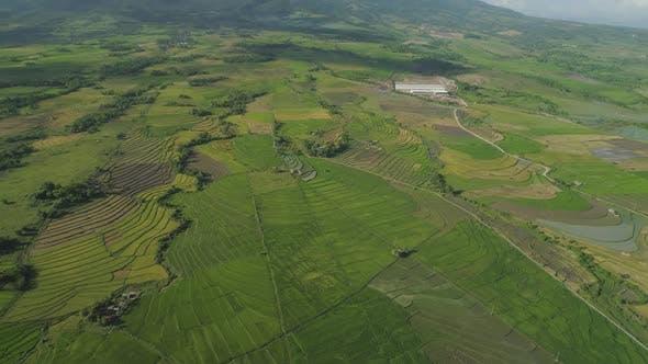 Thumbnail for Mountain Valley with Farmlands in the Philippines