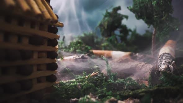 Thumbnail for Szene mit Spielzeugbau in Rauch und Stubs im Wald