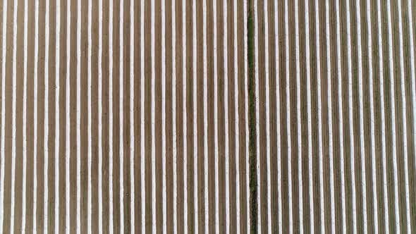 Thumbnail for Agricultural Fields Aerial Footage