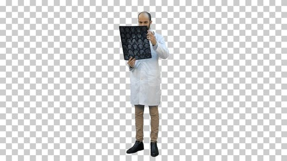 Male doctor analysing Xray results, Alpha Channel