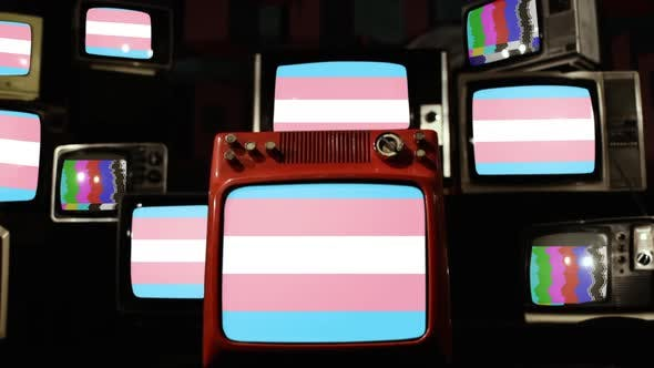 Thumbnail for Transgender Pride Flag and Retro TVs.
