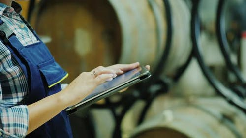 Hands of a Worker with a Tablet on a Background of Wine Barrels