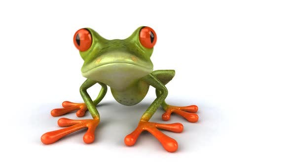 Thumbnail for Frog saying hello
