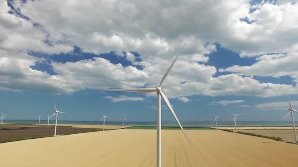 Thumbnail for Wind Farms on the Background of Yellow and Green Fields Near the Sea
