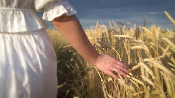 Thumbnail for Young Girl Walking Through a Wheat Field