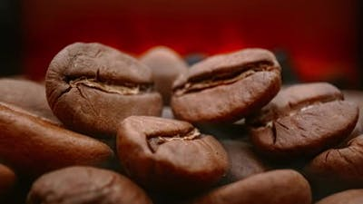 Close Up of Seeds of Coffee