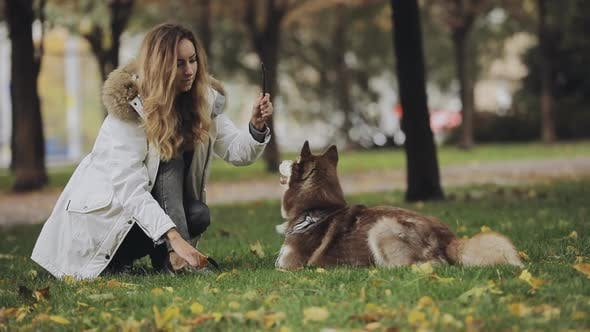 Thumbnail for Woman Playing with a Dog Husky in Park at the Autumn Day, Slow Motion