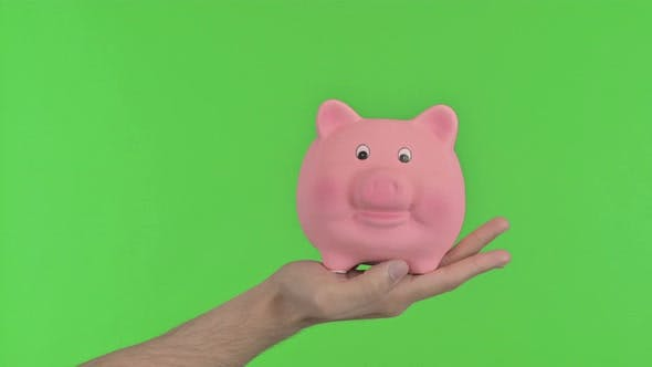 Piggy Bank, Chroma Key