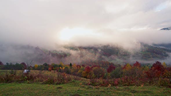 Beautiful Hills in Gloomy Gray Fog Covered with Colorful Autumn Trees in the Carpathians in