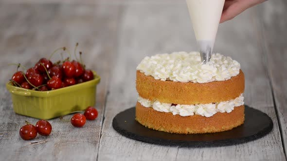 Thumbnail for Decorating a Cherry Cake with Cream From the Pastry Bag