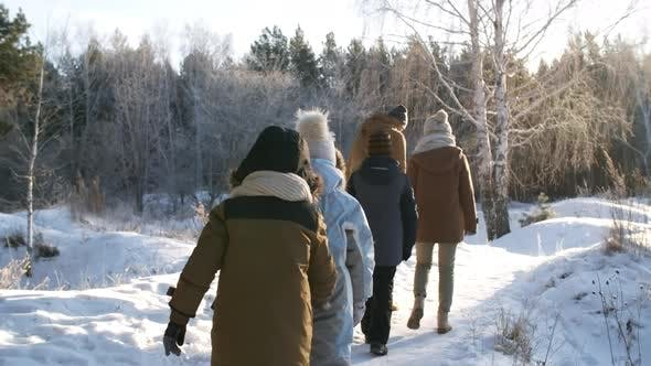 Thumbnail for Large Family Walking in Winter Woodland